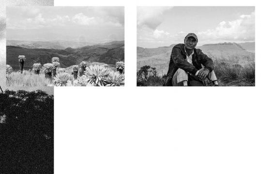 http://loic-colomb.fr/files/gimgs/th-25_MaquetteYann_Colombie-cyanà6.jpg